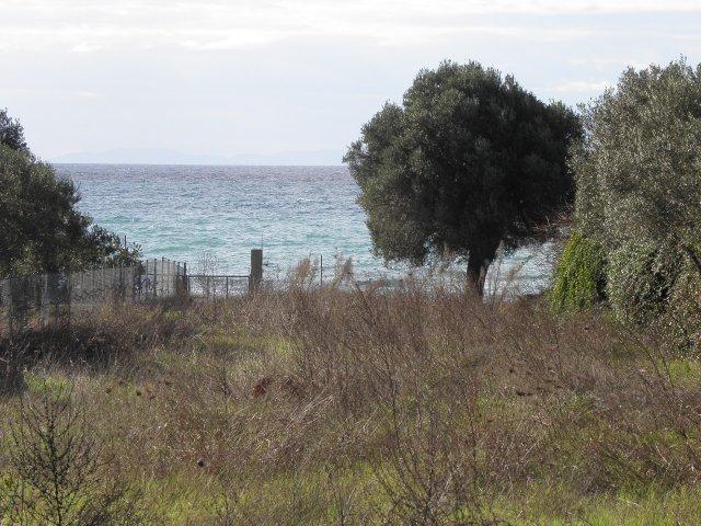 Земельный участок - Греция - Халкидики - Кассандра, основное фото