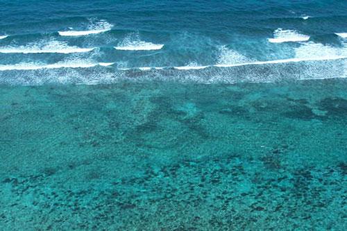 Прибрежная территория - Белиз - Белиз - Белиз, основное фото