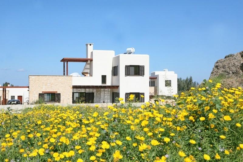 Вилла - Кипр - Южное побережье - Полис, основное фото