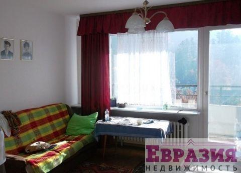 Квартира с панорамными окнами в горах - Германия - Баден-Вюртемберг, основное фото