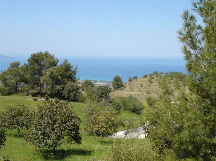 Земельный участок - Кипр - Южное побережье - Полис, основное фото