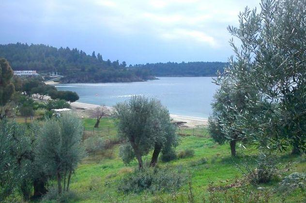 Земельный участок - Греция - Халкидики - п/о Ситония, основное фото