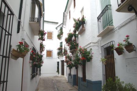 Недвижимость испании россиян